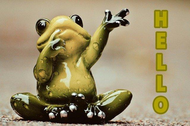 צפרדע אומרת שלום פעילות מגבשת